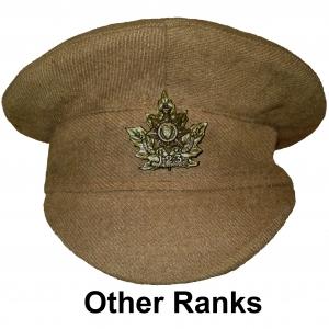 OR Cap1